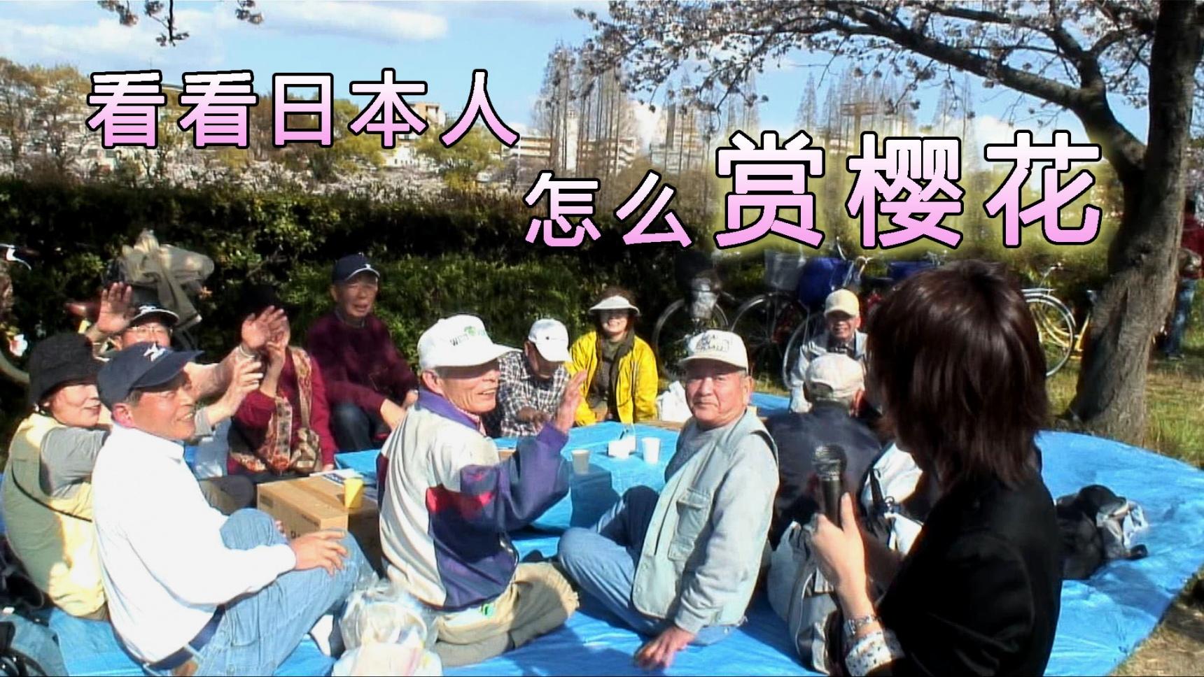 看看日本人怎么赏樱花