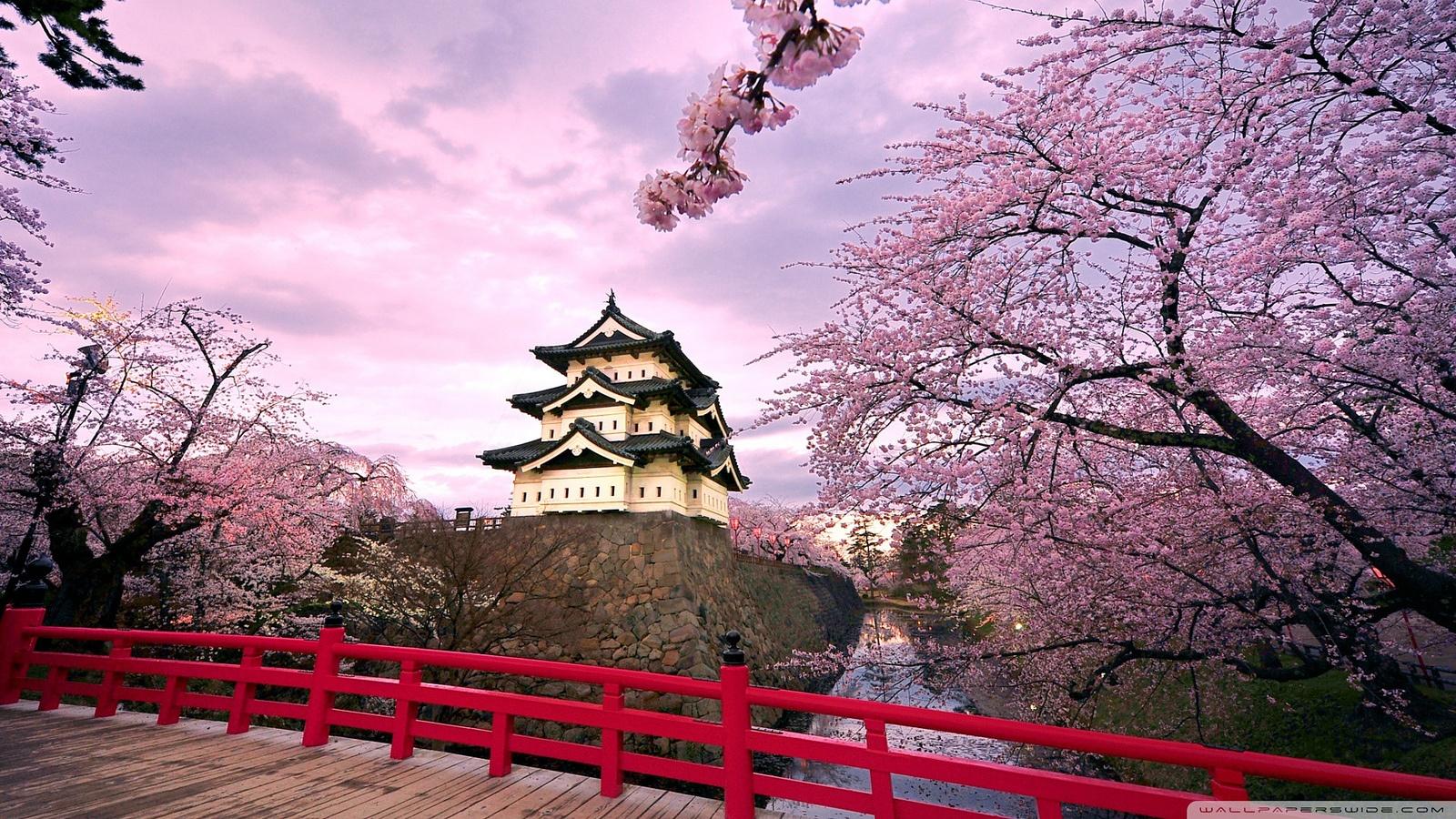 春游要趁早 | 日本东北10大必去春日景点