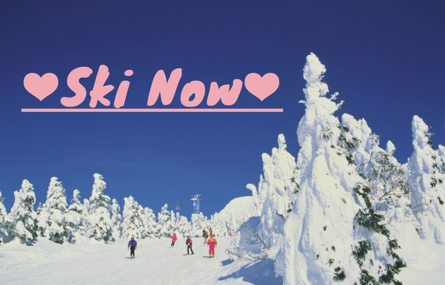 智游人 | 寒流来袭,冬日里该去哪撒野?东京近邻各县10大超人气滑雪圣地等你打卡