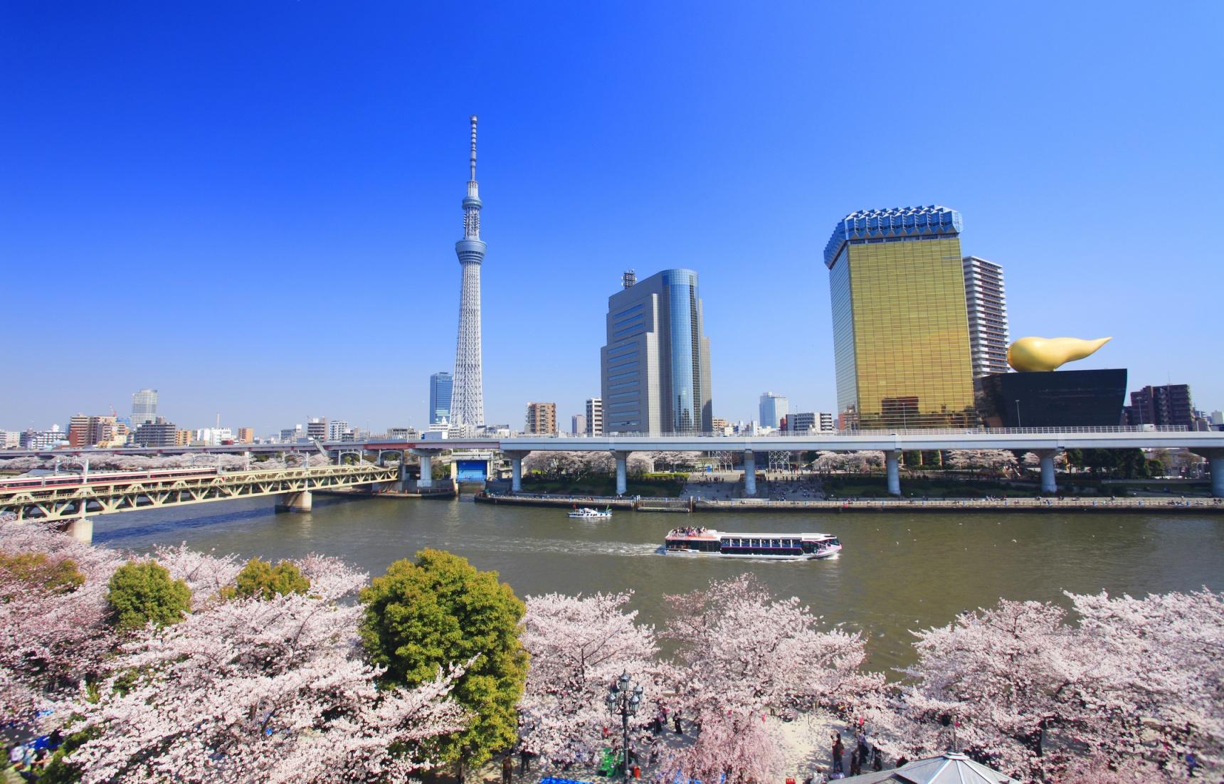 智游人|春天必访!2018东京赏樱名所及开花时间预测